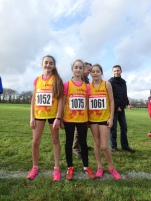 Bejamines - Carhaix - cross de la ligue